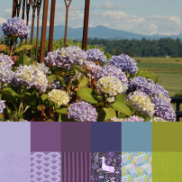 Hydrangea Palette and Bundle