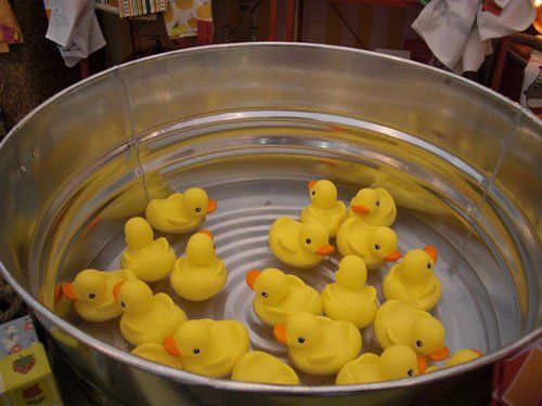 036 Rubber Ducks
