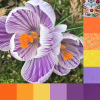 Crocus Palette and Bundle