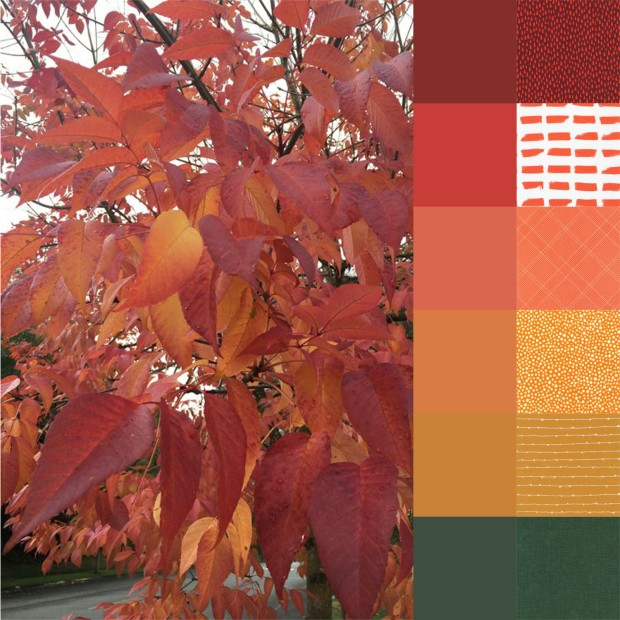 fall-walk-palette-and-bundle