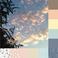 backyard-sunset-palette-and-bundle